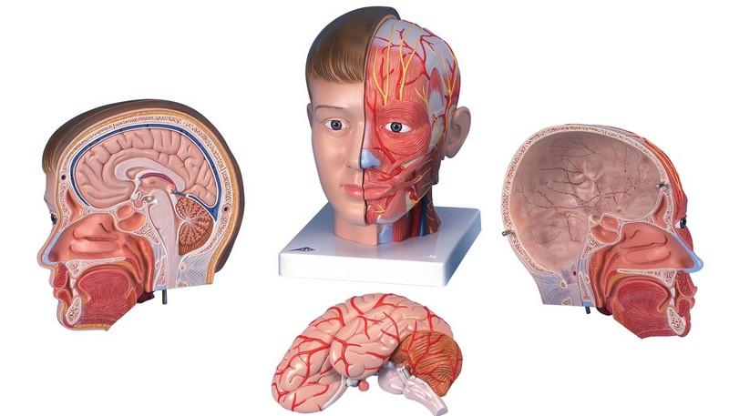 как появляется головокружение