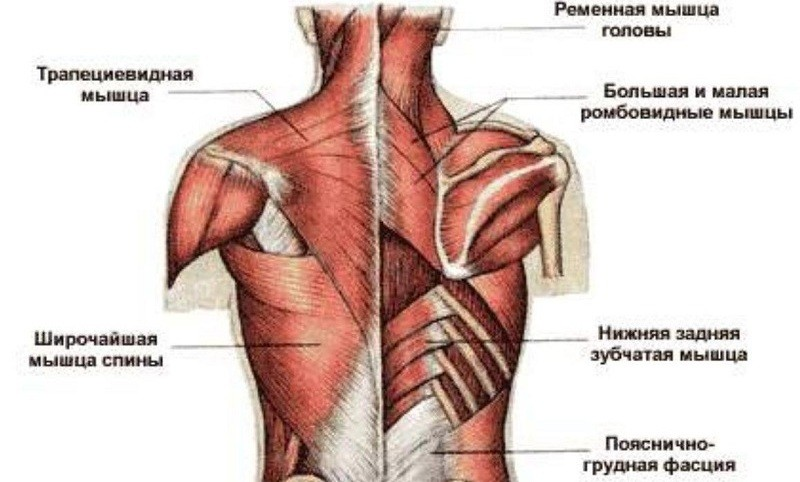 Как лечить боли при колите кишечника