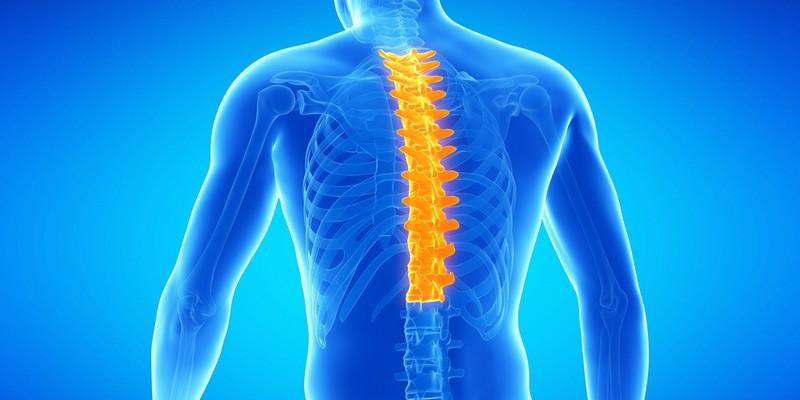 Хондроз грудного отдела позвоночника особенности заболевания симптомы лечение
