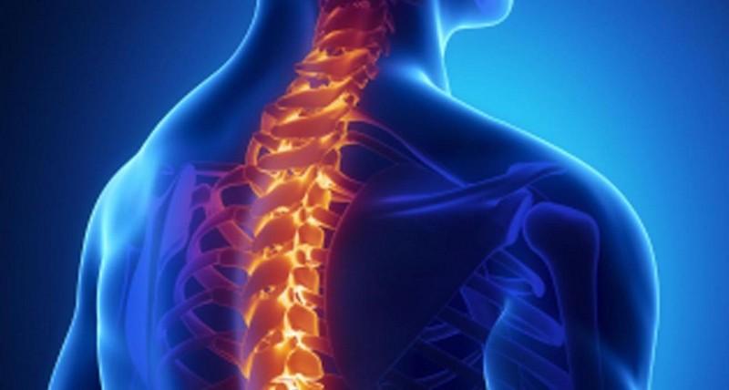 проявление перелома позвоночника в грудном отделе
