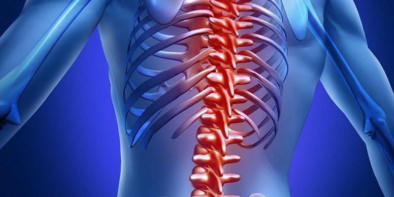Костный мозг при остеомиелите