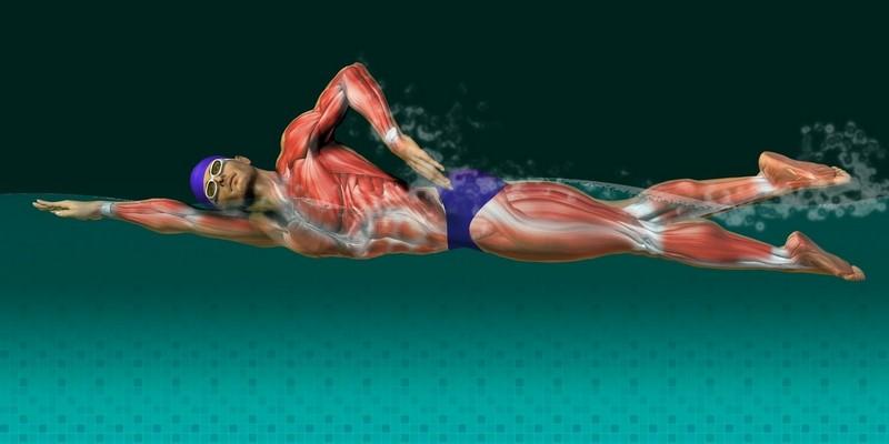 Упражнения в бассейне для позвоночника: при грыже, остеохондрозе ...