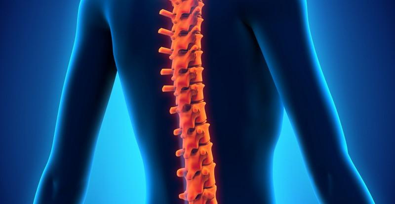 как проявляется ушиб спинного мозга