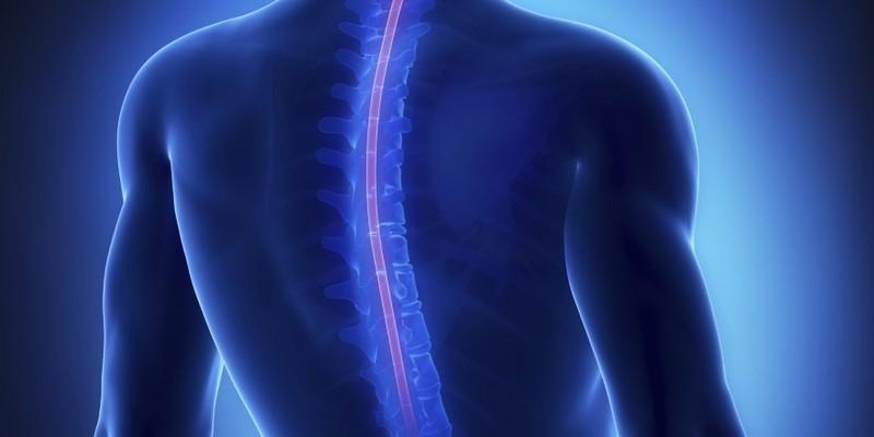 Чем опасен ушиб спинного мозга?